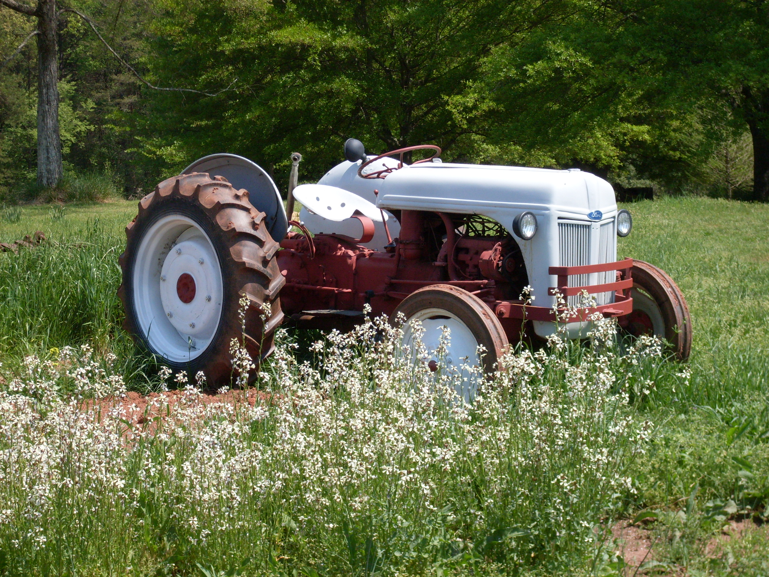 39 ford tractor